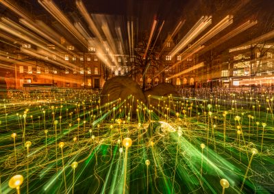 Field of Light, St. Andrew Square